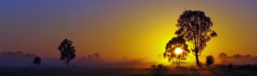 Sunrise through a mist near Emerald.