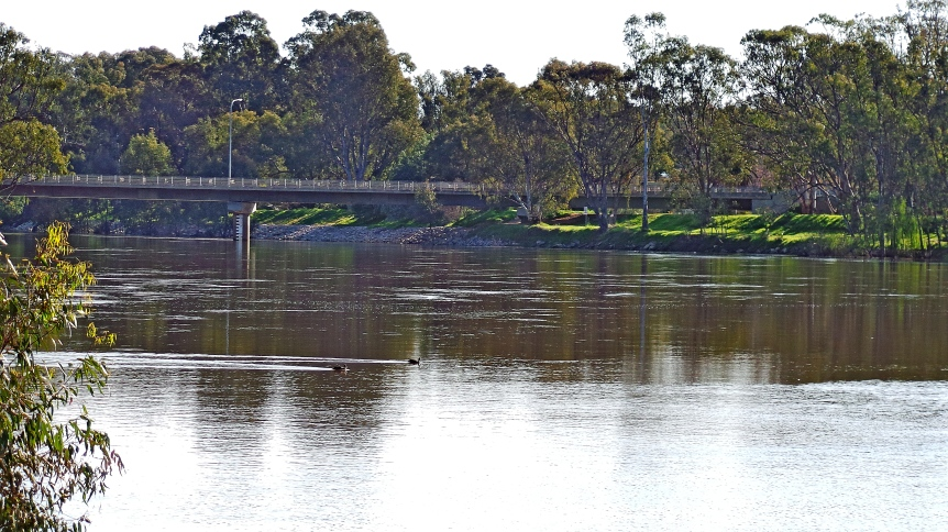 Murray River at Tocumwal